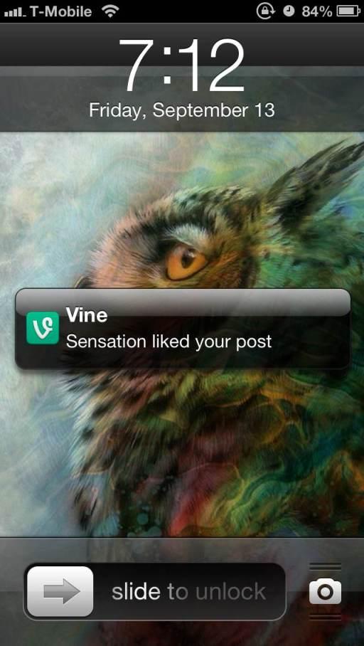 sensation-vine